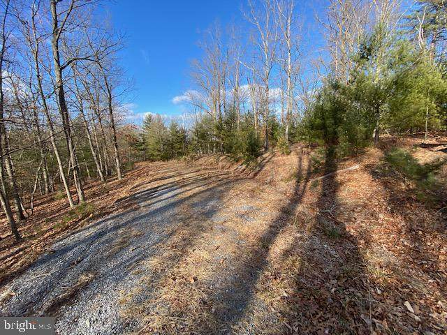 Lot 22 Slate Rock Pass Road, WARDENSVILLE, WV 26851 (#WVHD106628) :: The Mike Coleman Team