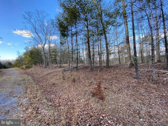 Lot 23 Slate Rock Pass Road, WARDENSVILLE, WV 26851 (#WVHD106630) :: The Mike Coleman Team