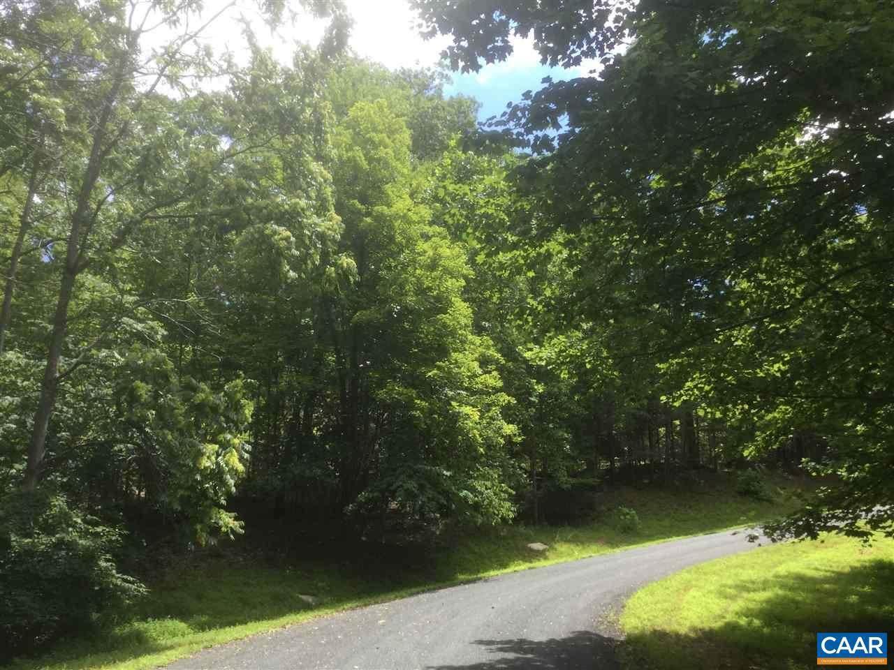 110 Wood Thrush Lane - Photo 1