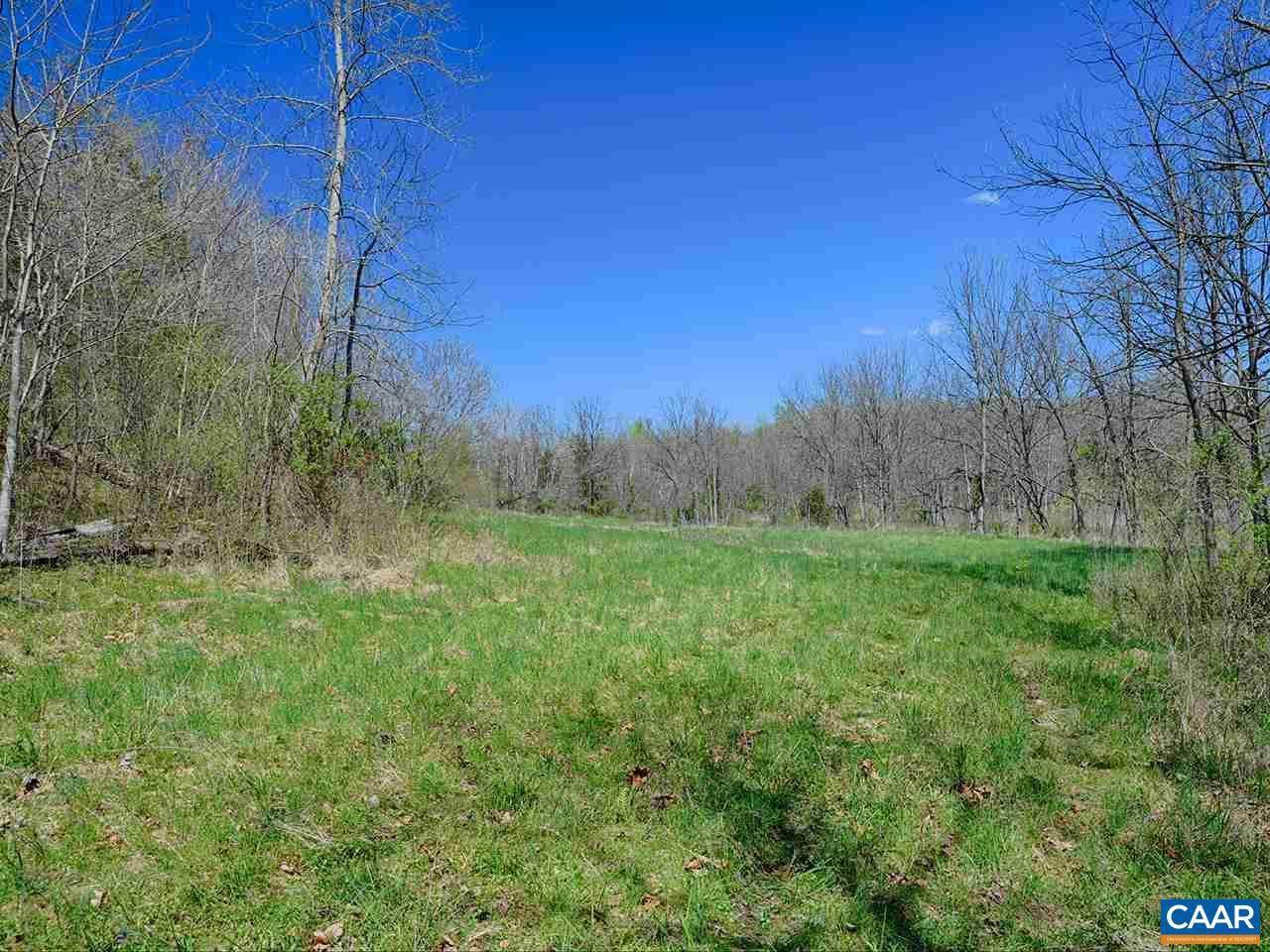 TBD Buck Creek Lane - Photo 1