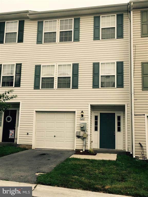 5245 Mulberry Terrace, STEPHENS CITY, VA 22655 (#VAFV162338) :: Keller Williams Flagship of Maryland