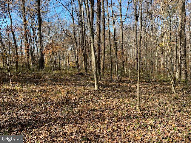 Lot 18 Mountain Ridge Way, CULPEPER, VA 22701 (#VACU143808) :: The Matt Lenza Real Estate Team