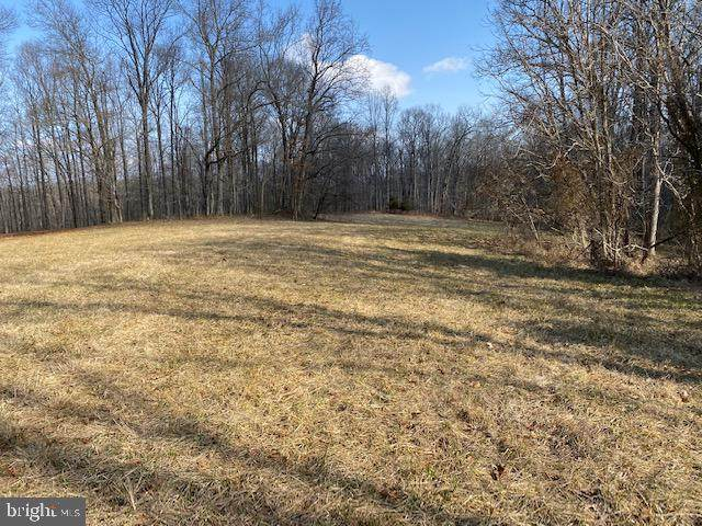 Lot 20 Sky Ridge Trail, CULPEPER, VA 22701 (#VACU143818) :: Network Realty Group
