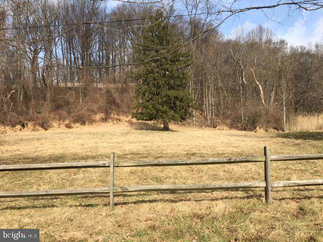 1351 Baltimore Pike, CHADDS FORD, PA 19317 (#PADE540606) :: The John Kriza Team