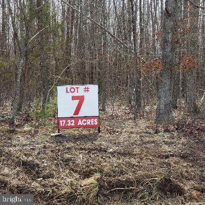 Lot 7 Old Plank Road - Photo 1