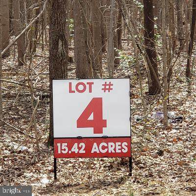 Lot 4 Old Plank Road - Photo 1