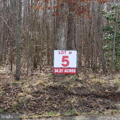 Lot 5 Old Plank Road - Photo 1