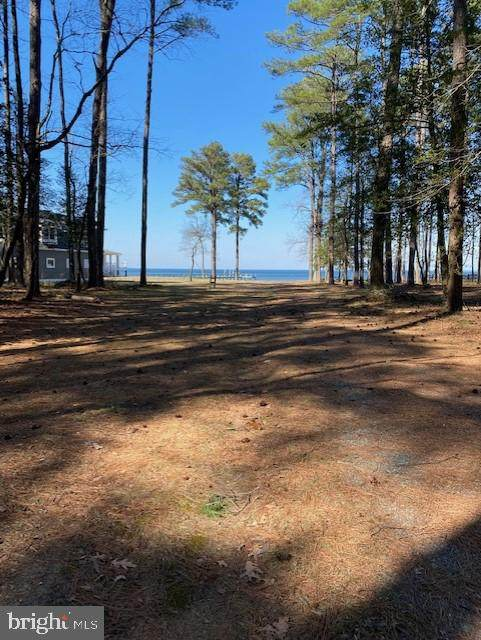 Sandy Beach Road, HEATHSVILLE, VA 22473 (#VANV101716) :: AJ Team Realty