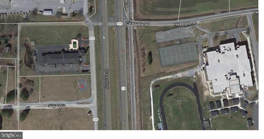 0 Route 13 Ocean Highway & Skipjack Circle - Photo 1