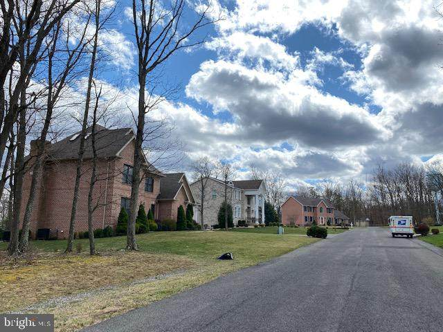 Cherrywood Avenue, CUMBERLAND, MD 21502 (#MDAL136500) :: AJ Team Realty