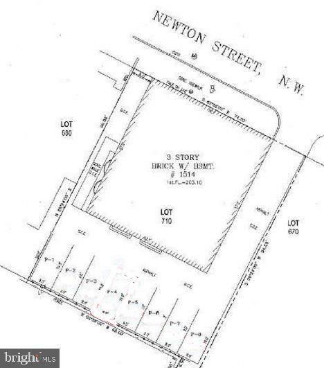 1514 Newton Street NW P-1, WASHINGTON, DC 20010 (#DCDC516754) :: Gail Nyman Group