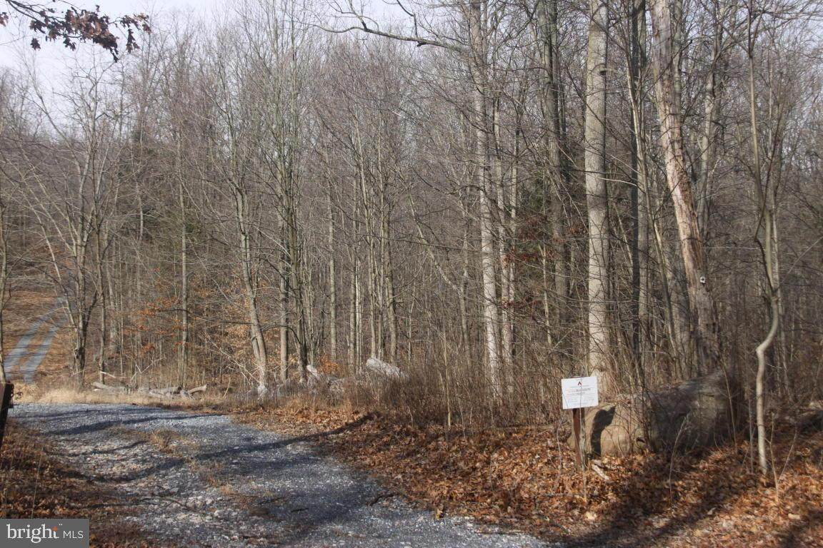 Lot 2 Mine Road - Photo 1