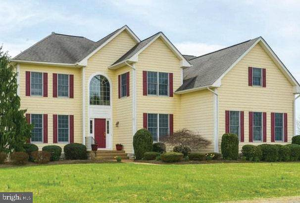 42305 Green Meadow Lane, LEESBURG, VA 20176 (#VALO436216) :: Pearson Smith Realty