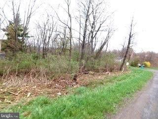 Elk District (Between Tramway Ave & Paughton Rd), ELK GARDEN, WV 26717 (#WVMI111882) :: Jennifer Mack Properties