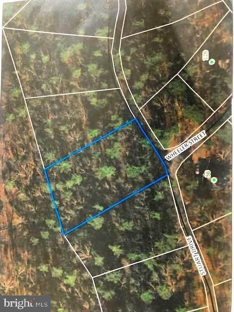 Stuart Drive, BASYE, VA 22810 (#VASH122070) :: Pearson Smith Realty