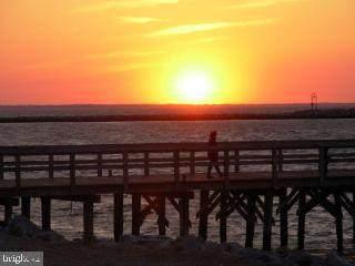 53 Cape Henlopen Drive #40, LEWES, DE 19958 (#DESU181910) :: CoastLine Realty