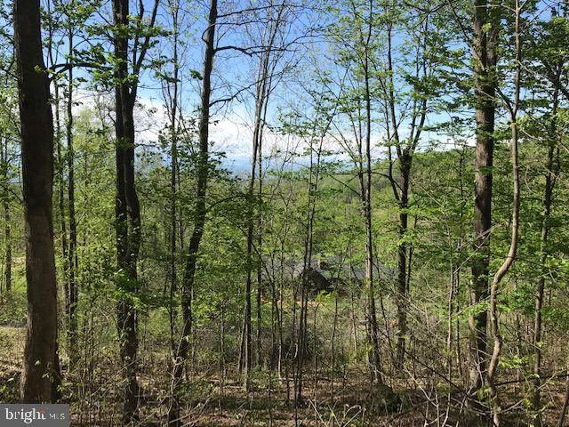 106A Mcdonalds Farm, LINDEN, VA 22642 (#VAWR143510) :: ExecuHome Realty
