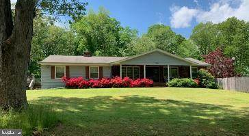 1365 Lake Avenue, PASADENA, MD 21122 (#MDAA467514) :: The Riffle Group of Keller Williams Select Realtors