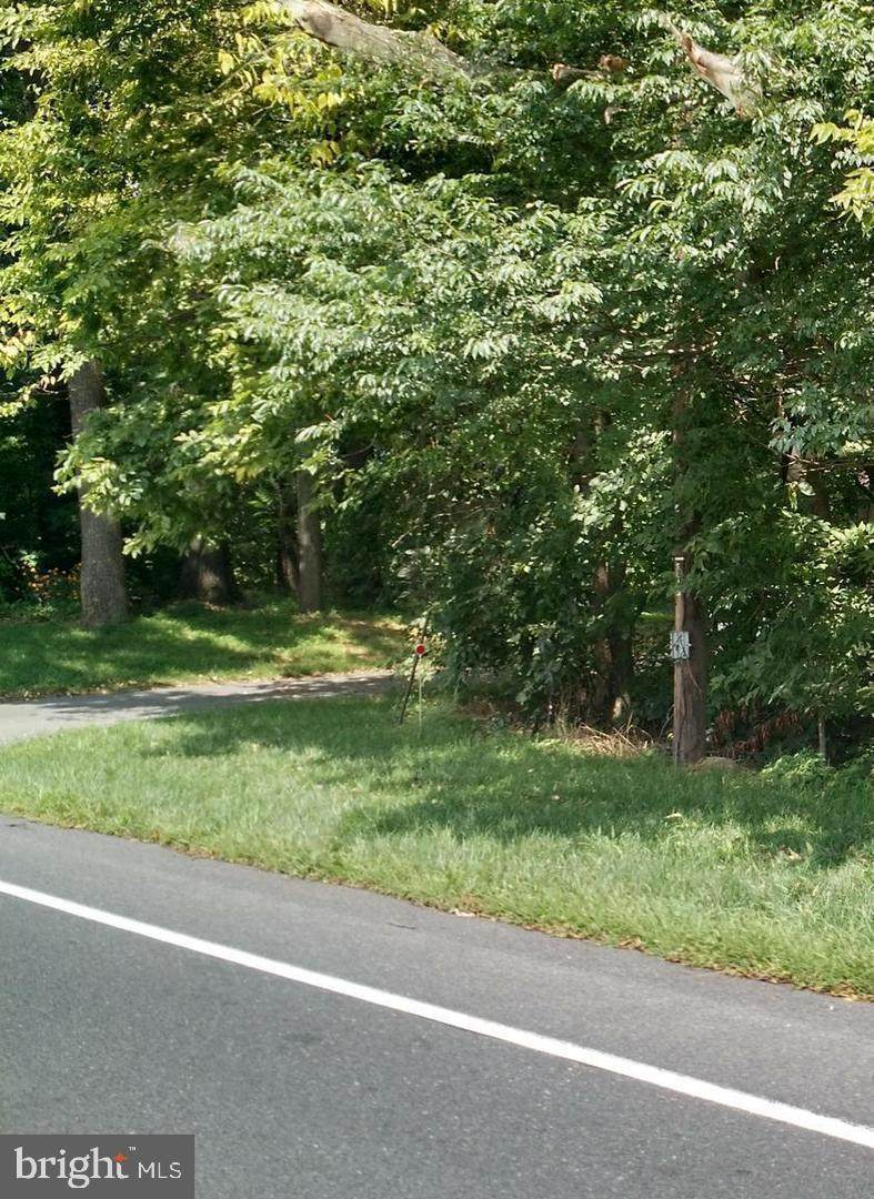 Buchanan Trail - Photo 1