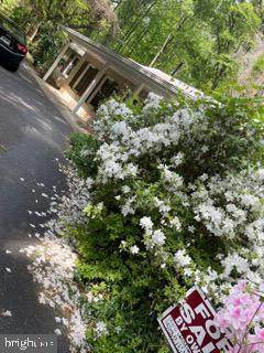 18310 Woodland Drive, TRIANGLE, VA 22172 (#VAPW522172) :: Coleman & Associates
