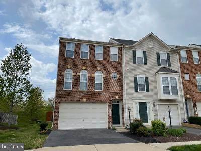 25381 Peaceful Terrace, ALDIE, VA 20105 (#VALO438186) :: RE/MAX Advantage Realty