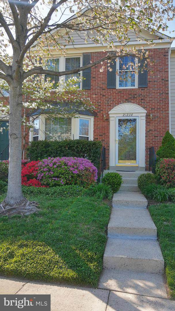 21238 Hedgerow Terrace, ASHBURN, VA 20147 (#VALO438608) :: Peter Knapp Realty Group