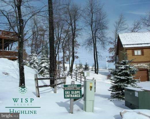 23 Snowshoe, MC HENRY, MD 21541 (#MDGA135176) :: ExecuHome Realty