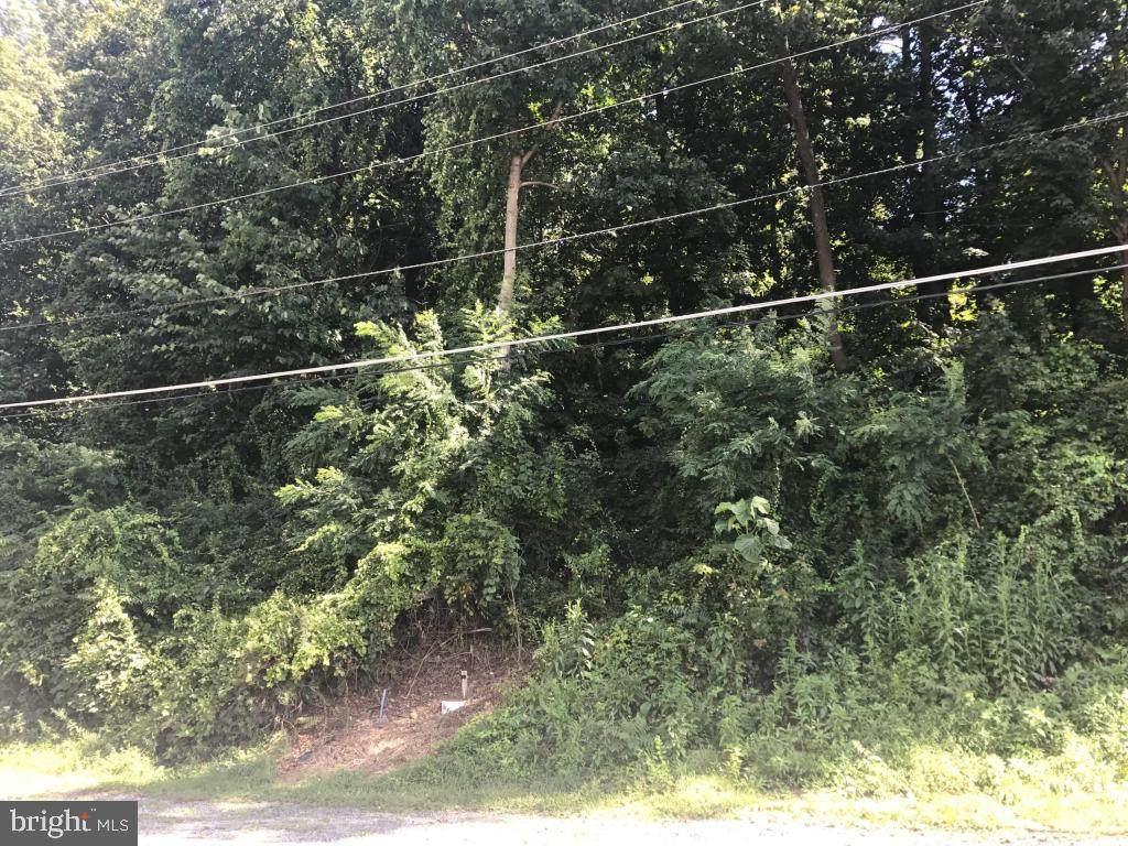 292 Rexmont Road - Photo 1