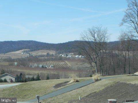 50 Orchard Court, BIGLERVILLE, PA 17307 (#PAAD116148) :: The Craig Hartranft Team, Berkshire Hathaway Homesale Realty
