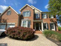 43272 Augustine Place, ASHBURN, VA 20147 (#VALO438772) :: Crews Real Estate
