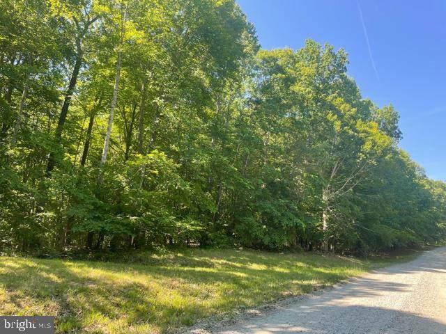 Long Branch, STAFFORD, VA 22556 (#VAST232764) :: Dart Homes