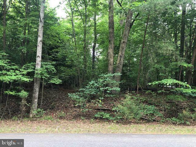 5403 Rye Hill Trail, MINERAL, VA 23117 (#VASP232166) :: LoCoMusings