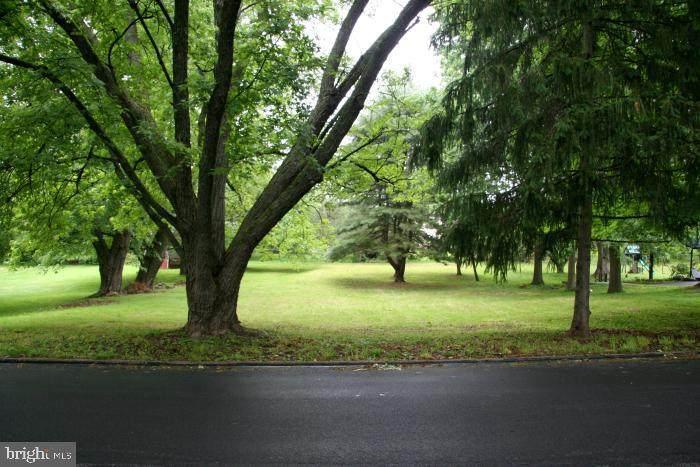 0 Spring Lane - Photo 1