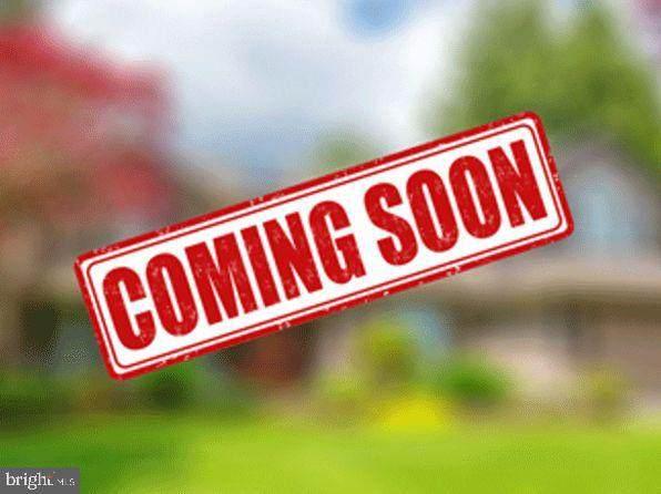 1242 Tide Lock Street, BRUNSWICK, MD 21716 (#MDFR284224) :: Sunrise Home Sales Team of Mackintosh Inc Realtors