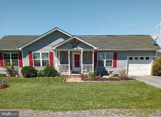 290 Sonya Lane, BUNKER HILL, WV 25413 (#WVBE186780) :: The Riffle Group of Keller Williams Select Realtors
