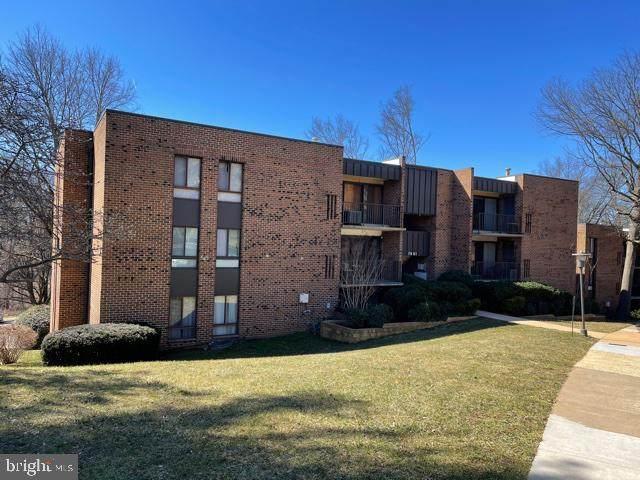 7901 Dassett Court #104, ANNANDALE, VA 22003 (#VAFX1209538) :: Peter Knapp Realty Group