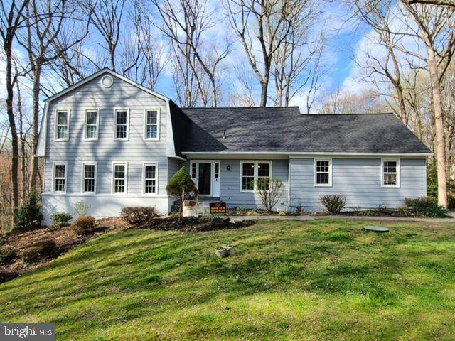 11014 Blenheim Drive, OAKTON, VA 22124 (#VAFX2000004) :: City Smart Living