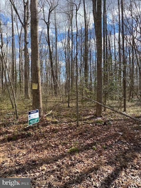 0 Backwoods Trail, JEFFERSONTON, VA 22724 (#VACU2000002) :: AJ Team Realty