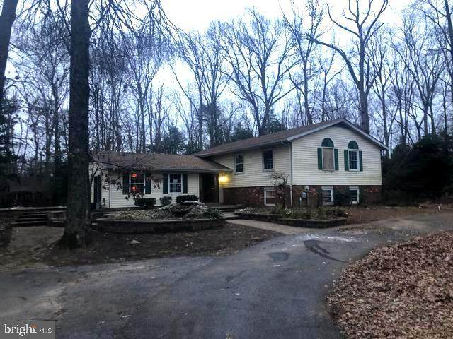 1366 Lake Avenue, PASADENA, MD 21122 (#MDAA2000104) :: Great Falls Great Homes