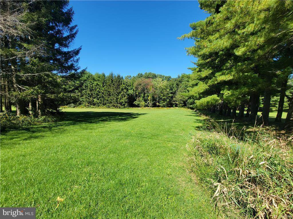 1340 Forest Street #+/- 50 Acres - Photo 1