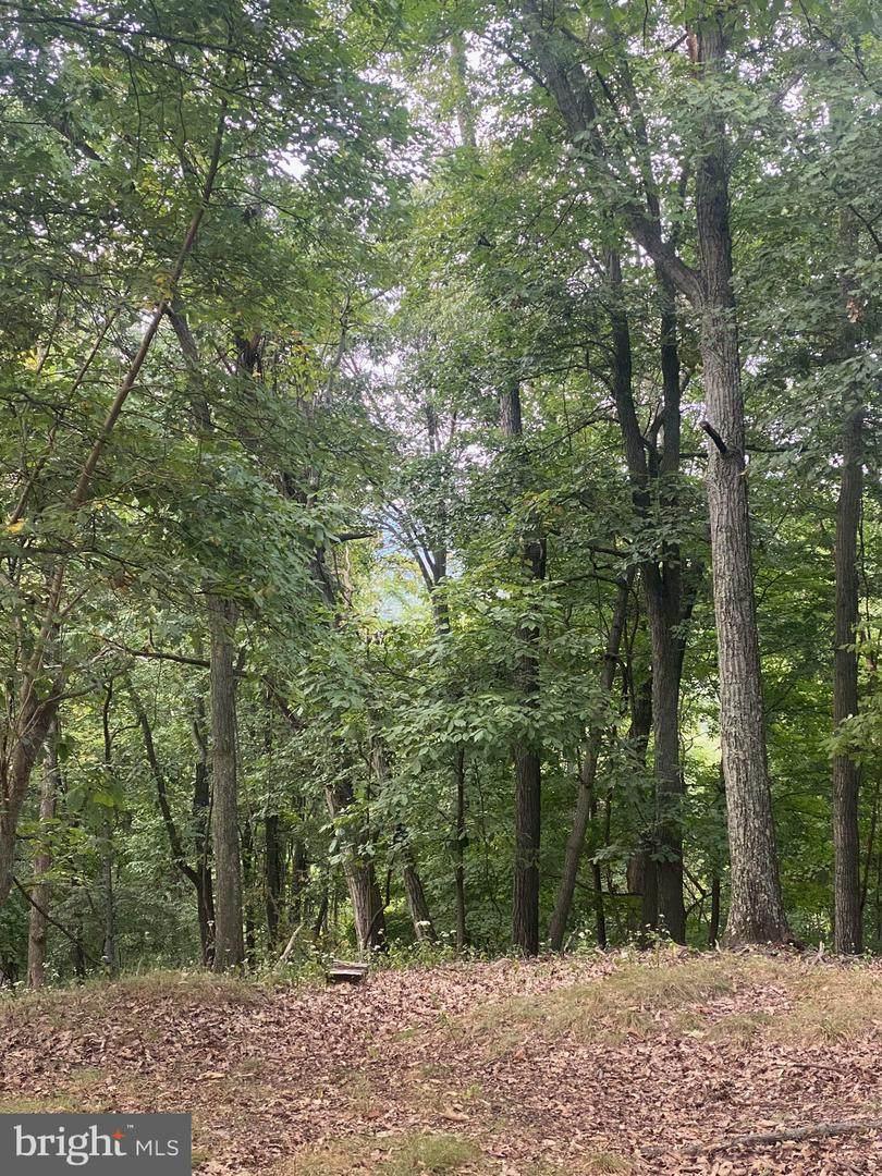 0 Lonesome Pine Lane - Photo 1