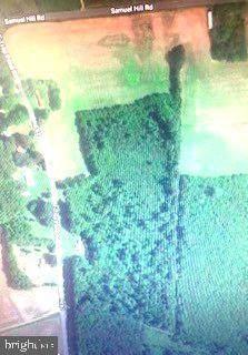 31495 E Trap Pond Road E, LAUREL, DE 19956 (#DESU2000476) :: Murray & Co. Real Estate