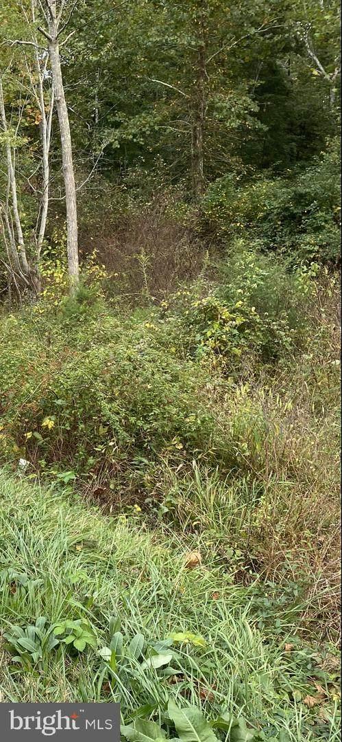 Three Notch Road, LOUISA, VA 23093 (#VALA2000035) :: Dart Homes