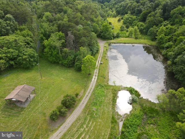10 Carmel Court, PURGITSVILLE, WV 26852 (#WVHS2000038) :: Revol Real Estate