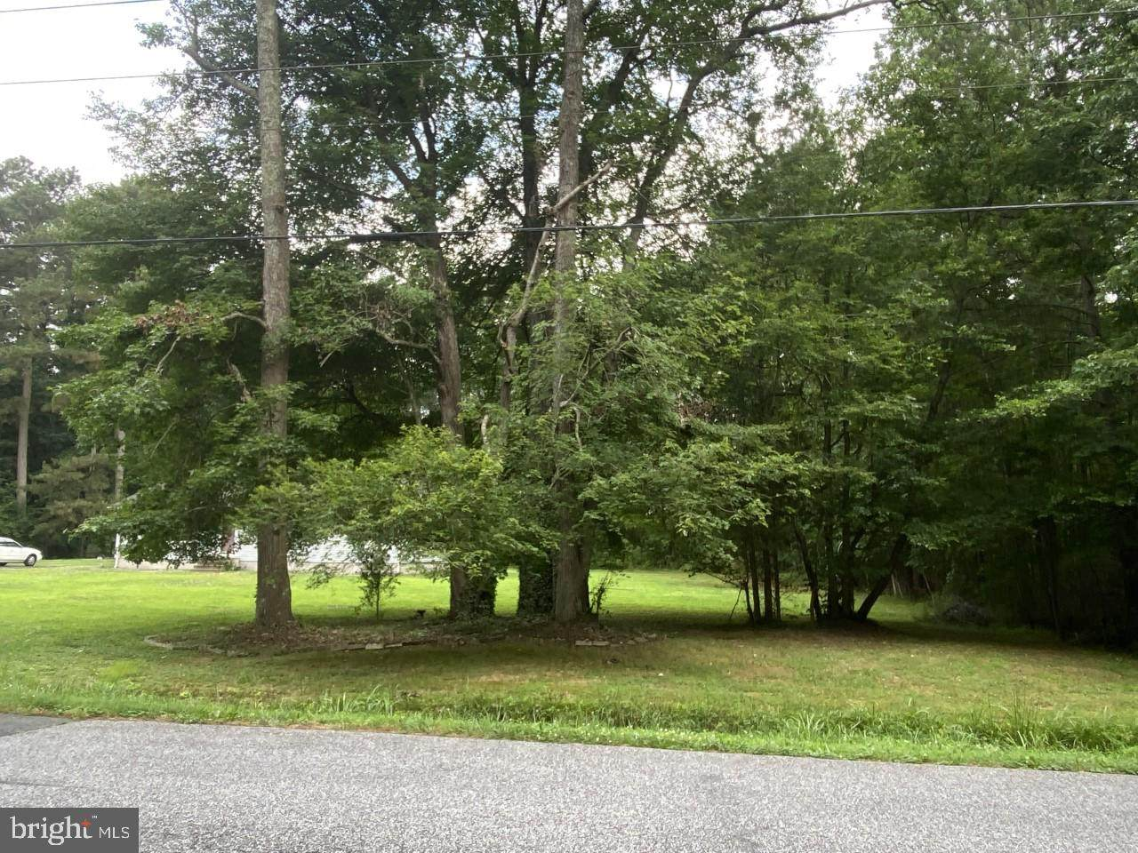 1.25 AC Old Westover Marion Road - Photo 1