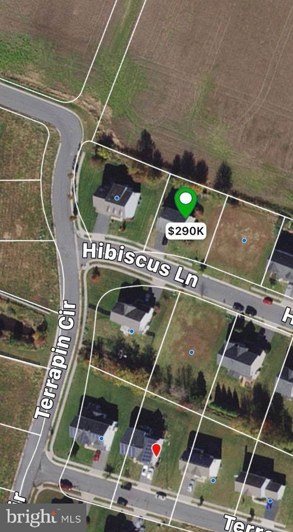 213 Hibiscus Lane - Photo 1
