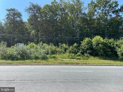 Pulaski Highway - Photo 1
