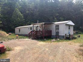 103 Hook Trail, MATHIAS, WV 26812 (#WVHD2000134) :: Integrity Home Team
