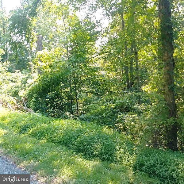 37 Plain View Trail - Photo 1