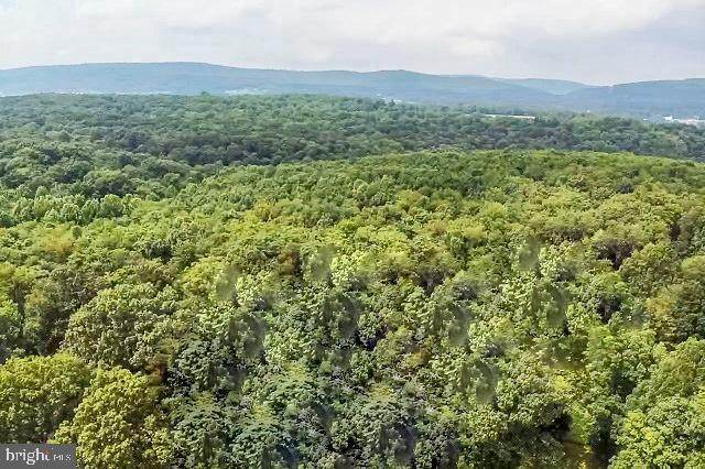 89.7 ACRES Speedwell Forge Road, MANHEIM, PA 17545 (#PALA2003284) :: The Joy Daniels Real Estate Group